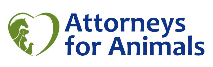Attorneys for Animals